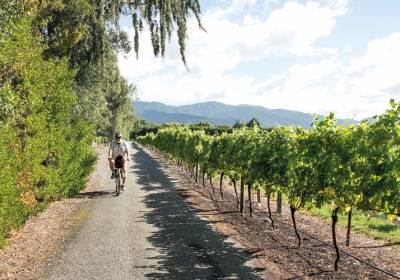 Uusi-Seelanti ja viinireitti
